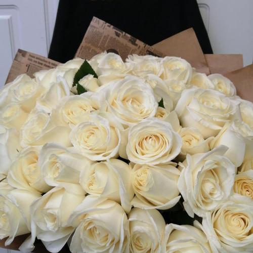 Букет из 35 белых роз Снежок