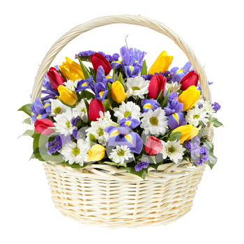 Basket 'Tulips and Iris'